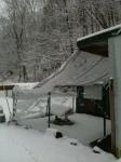 snowy coop